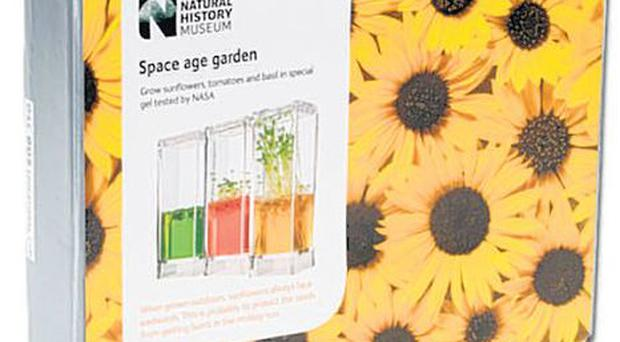 <b>Grow Your Own Space Age Garden </b><br/> Most children will eat vegetables that they have grown on their own patch. This kit allows them to grow tomatoes in a gel ecosystem, which means they can see the roots developing as well as the bits above ground, and then transplant them into a traditional pot. <br/> Where 020-7942 5494; www.nhmshop.co.uk <br/> How much £20