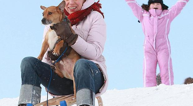 Bianca Ziemann from Dublin gives her pet dog Alfie a ride on her toboggan watched in Phoenix Park, central Dublin