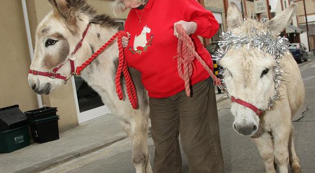 Ann Widdecombe took a stroll with two donkeys to promote the charity