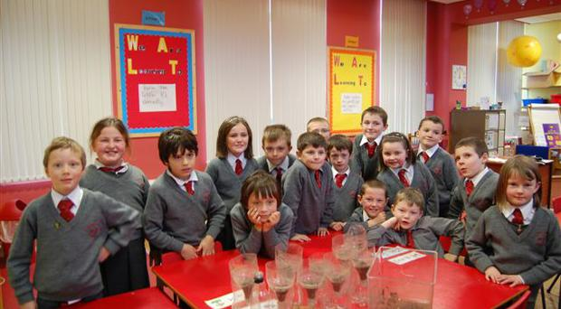 NI Water programme, H2O and the Wonderful World of Water, made a splash at Kircubbin Primary School last week