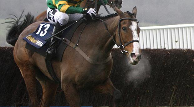 Wichita Lineman ridden by Tony McCoy