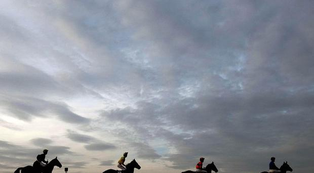Horses going to post as the light fades at Punchestown