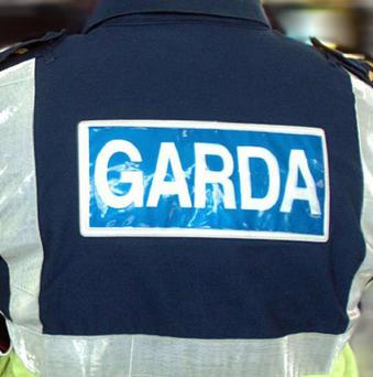 A man has died after a stabbing in north Co Dublin
