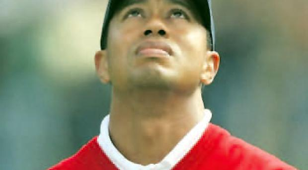 Only way is up: Golf television audiences plummet when former world number one Tiger Woods is absent or not in contention