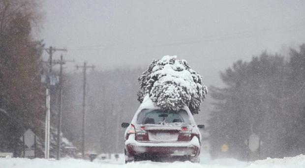 A car with a tree on top travels on a snow-covered road in Michigan, US (AP)