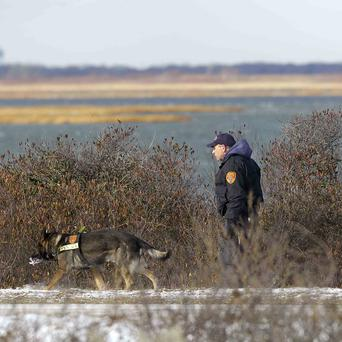 Authorities search in the brush by the side of the road at Cedar Beach, near Babylon, New York