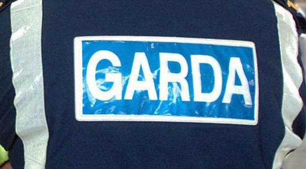 Gardai are appealing for witnesses after a stabbing in the garden of a house in Ennis