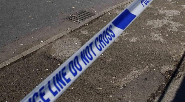 A girl, four, has been found stabbed to death in east London