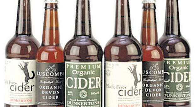 <b>Christmas Cider Case</b><br/> Cider has enjoyed a renaissance in recent years thanks to artisan producers and microbreweries such as Devonshire-based Luscombe. This organic selection case includes the medium-dry Black Fox and medium-sweet Dunkertons premium.The perfect way to perk up the cold meat buffets of Boxing Day.<br/> <b>Where </b>www.abelandcole.co.uk <br/> <b>How much </b>£10.99