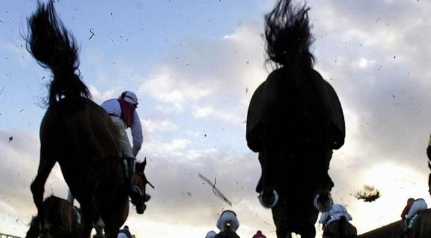 Action from Leopardstown.