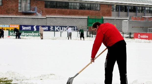 Ground staff work on the Ravenhill pitch yesterday