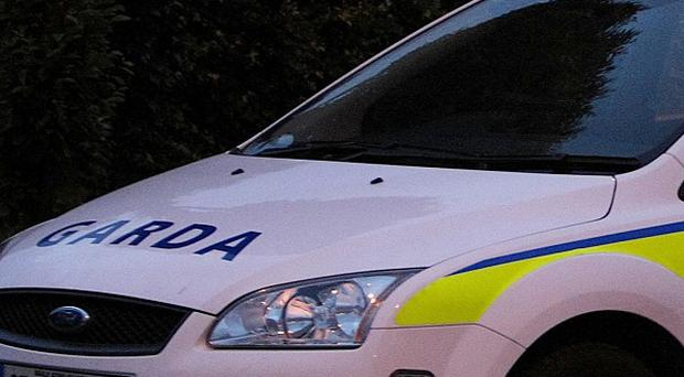 Gardai are seeking witnesses after a fatal road crash