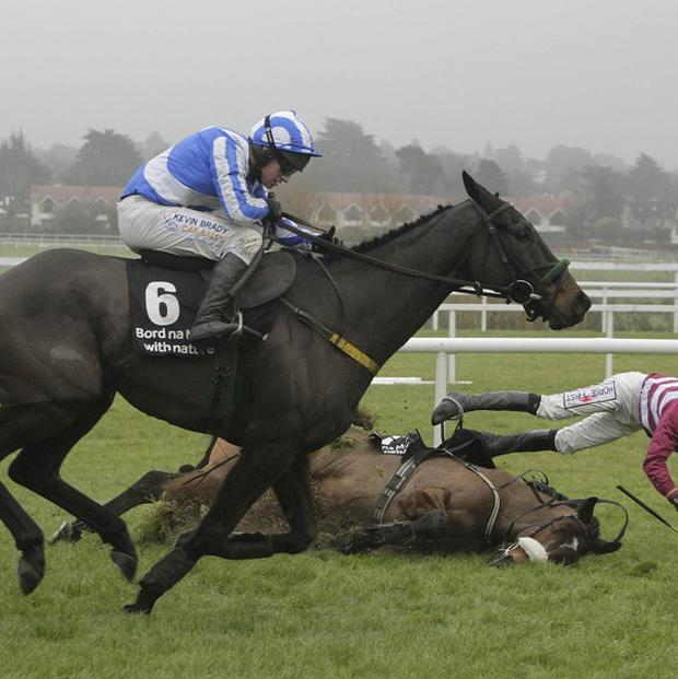 Realt Dubh hits the front as Saludos falls at the last at Leopardstown