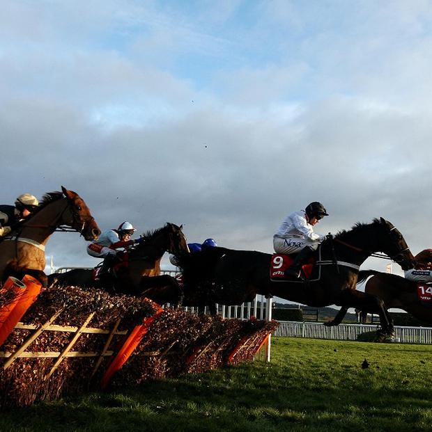 Jumps action from Cheltenham