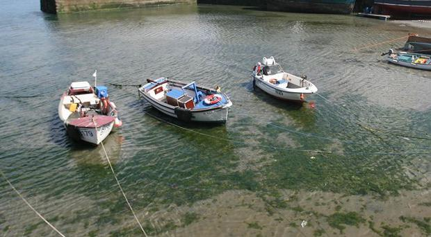 Four fishermen were rescued after their boat hit rocks near Ardglass Harbour in County Down