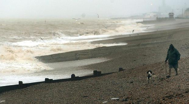 A man has died after trying to rescue his dogs from icy-cold waters on Brighton seafront