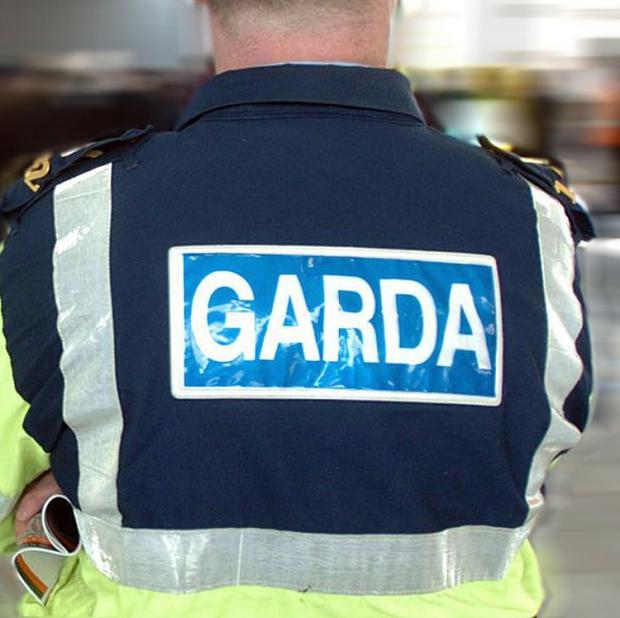 The body of a man believed to have been stabbed to death has been found in a ditch in Dublin