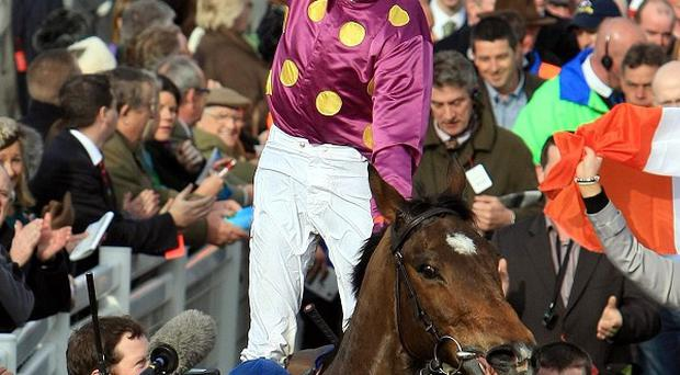 Big Zeb after last year's Champion Chase triumph
