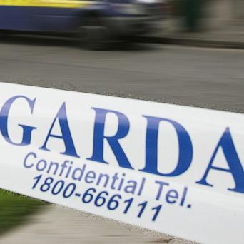 Gardai have arrested five men in a probe into dissident republican activity