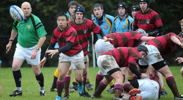 Royal School Dungannon's Gary Wong attempts to set up an attack in their Northern Bank Schools' Cup win over Antrim Grammar.