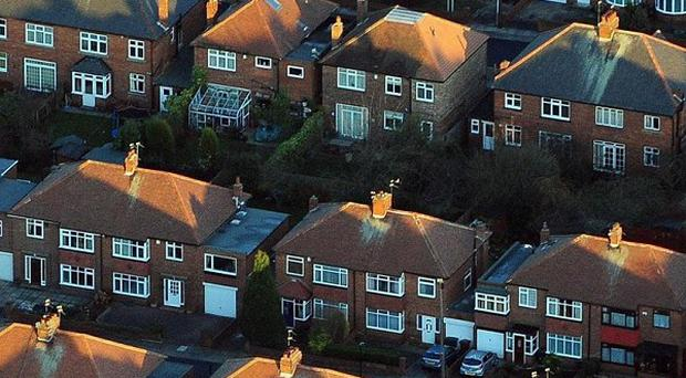 Elderly council tenants could be allocated 'house hunters' to help move them into smaller properties