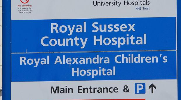 A two-year-old boy mauled by his family dog is recovering at the Royal Sussex County Hospital