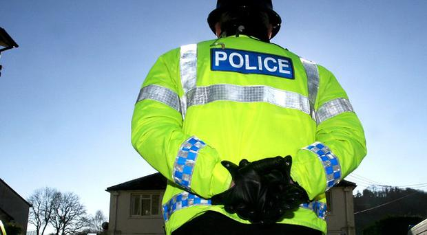 Promiscuity is seen as part of the job of undercover policing, an agent has told a newspaper
