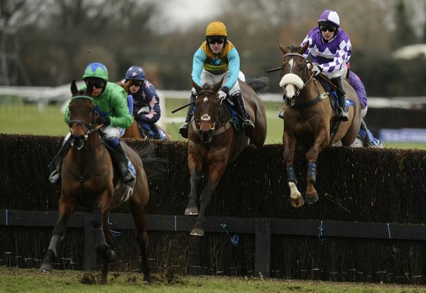 Tony McCoy rides Folie A Deux (centre) to victory in the British Barley Handicap Steeple Chase at Warwick yesterday.