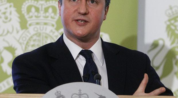 David Cameron said his brother-in-law cast doubt on the Government's plans to reform the NHS