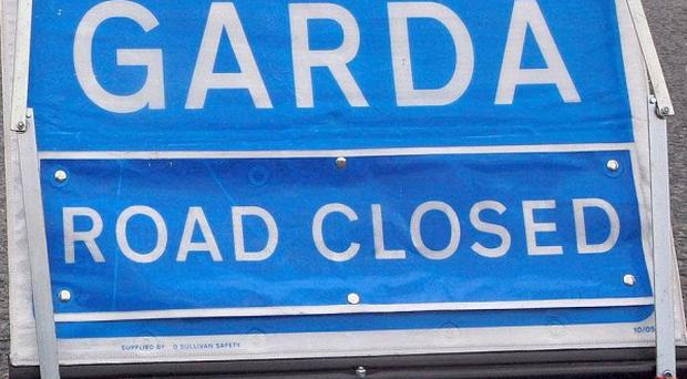 Gardai are appealing for witnesses after a fatal road crash
