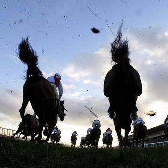 Leopardstown action