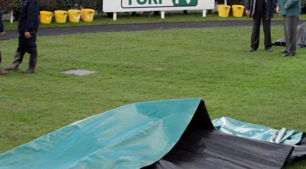 Racing at Newbury was abandoned following the first race after two horses died in mysterious circumstances in the parade ring.
