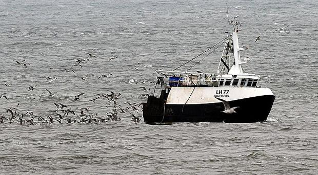 Controversial EU fishing rules force fishermen to throw millions of dead fish back into the sea
