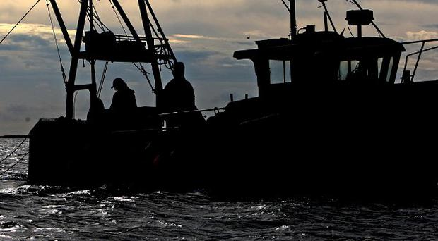 A Northern Ireland-registered fishing vessel has been detained by the Irish navy