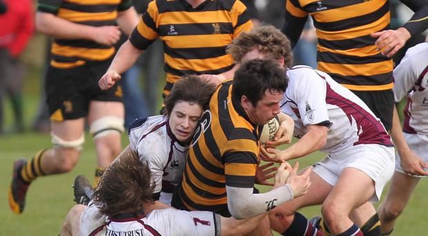 Inst's Paddy Bell (No 6) is relishing his Schools' Cup final appearance