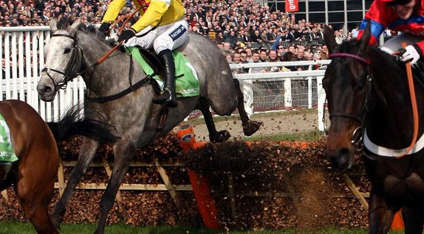The grey Al Ferof has it to do at the last