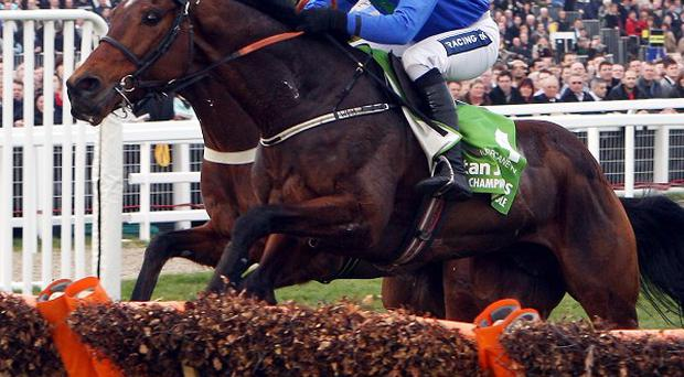 Hurricane Fly jumps the last in company with Peddlers Cross