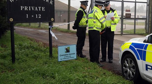 A man is being questioned in connection with the murder of two men shot dead at a traveller site