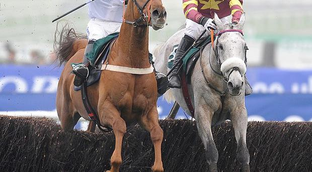 Chicago Grey (right) challenges for the lead at the last