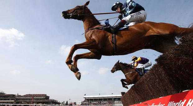 Wishfull Thinking ridden by Richard Johnson (left) jumps a fence during the Jewson Novices' Chase ahead of eventual winner Noble Prince ridden by Tony McCoy during St Patrick's Day at Cheltenham Racecourse