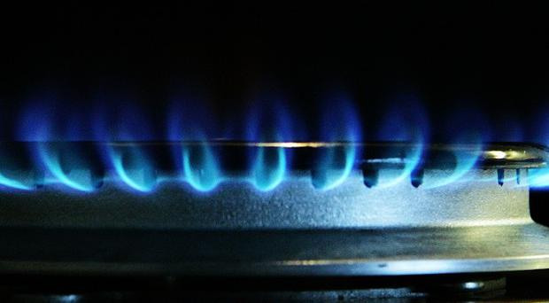 Ireland must review its dependency on imported gas, An Taisce has warned