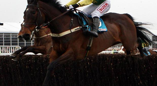 Sizing Europe leads at the last in the Champion Chase