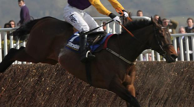 Noble Prince clears the last on his way to victory