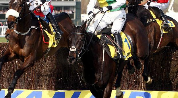Albertas Run is in command at the last