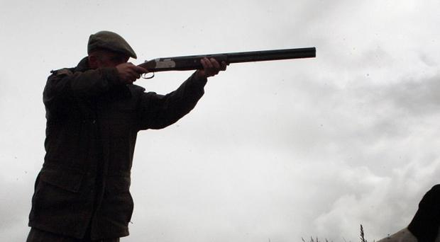 Children as young as seven have been granted licences for shotguns, according to new data