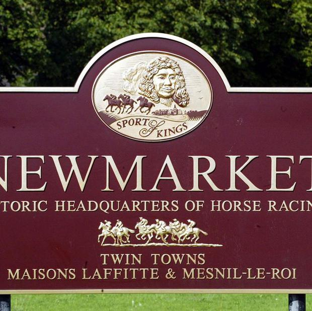 A High Court judge declared that the Newmarket housing strategy failed to comply with an EU planning directive