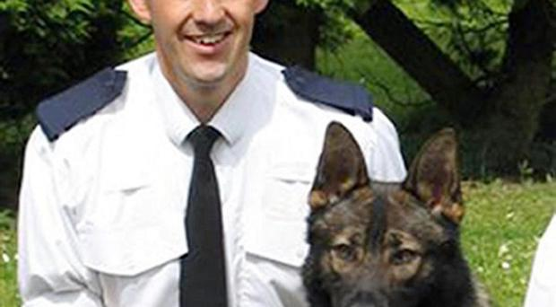 Police dog Baz died while searching for intruders a day before he was due to retire