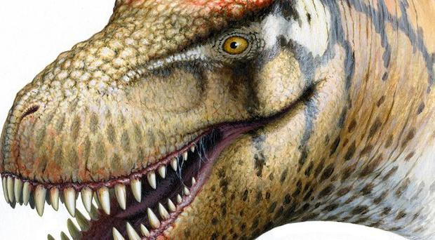 An artist's impression of a new dinosaur identified from fossils dug up in China (University College Dublin/PA)