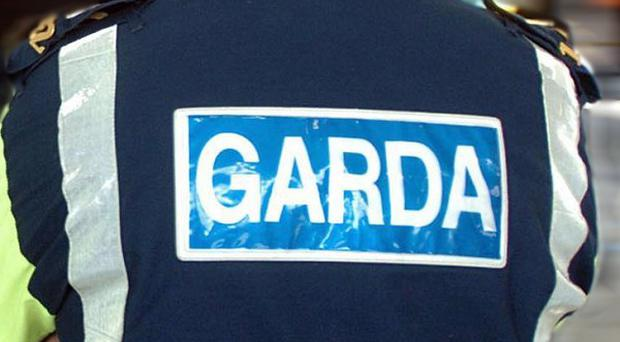 Gardai and military police are both investigating the incident