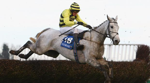 Silver By Nature will be ridden by Ulsterman Peter Buchanan in the Grand National on Saturday